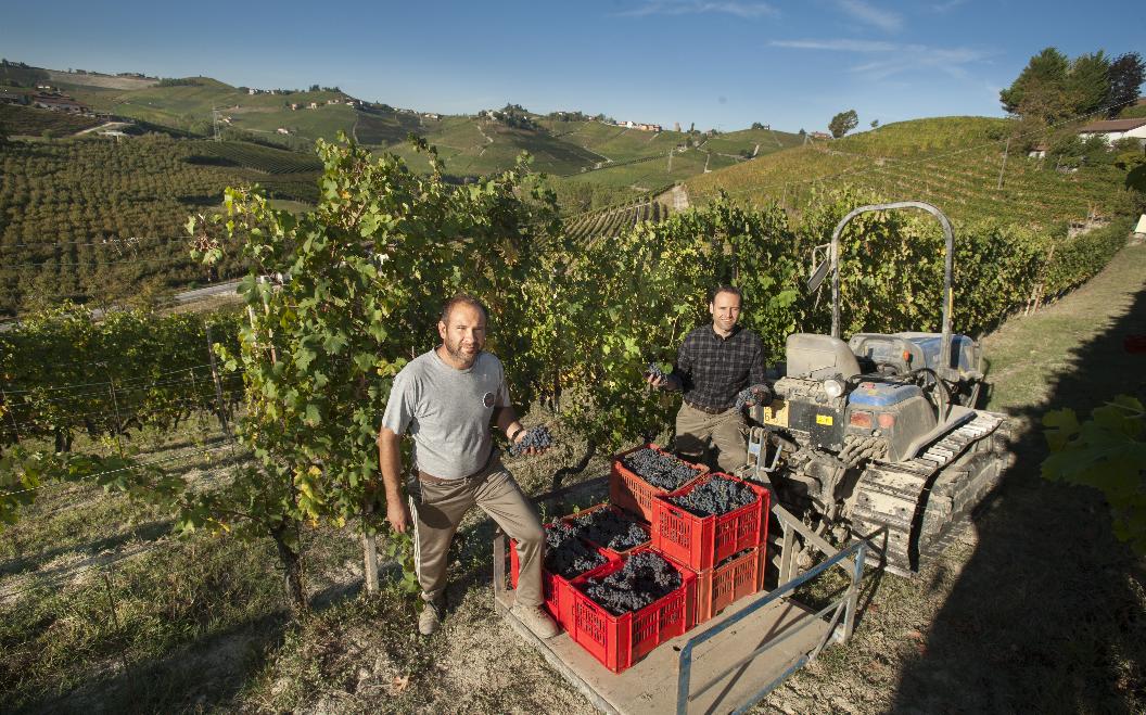 Photo of Cantina Francone : Familietraditie en een passie voor kwaliteitswijnen in Piemonte