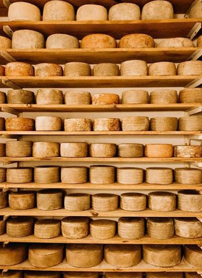 Photo of Pecorino, niet zomaar een Italiaanse kaas..